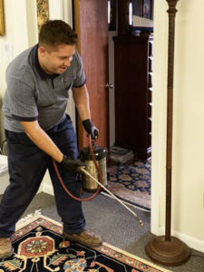 pest control maintenance contracts suffolk va